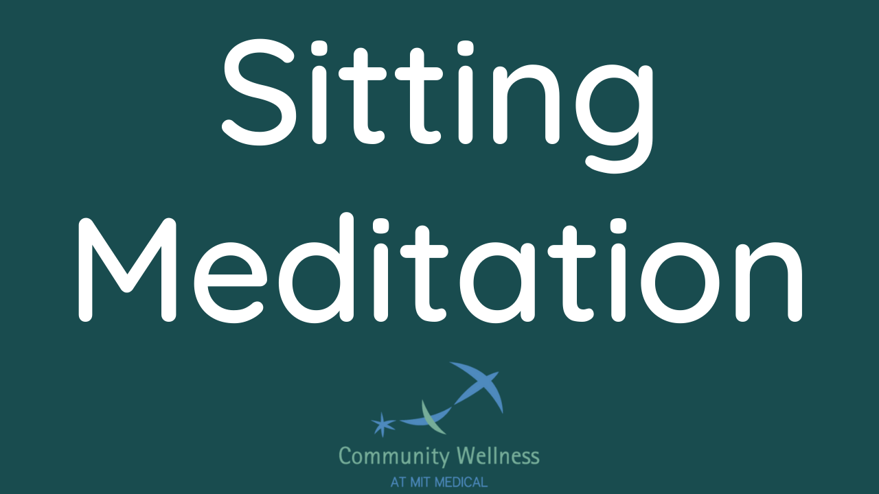 Sitting Meditation (An MBSR curriculum recording)