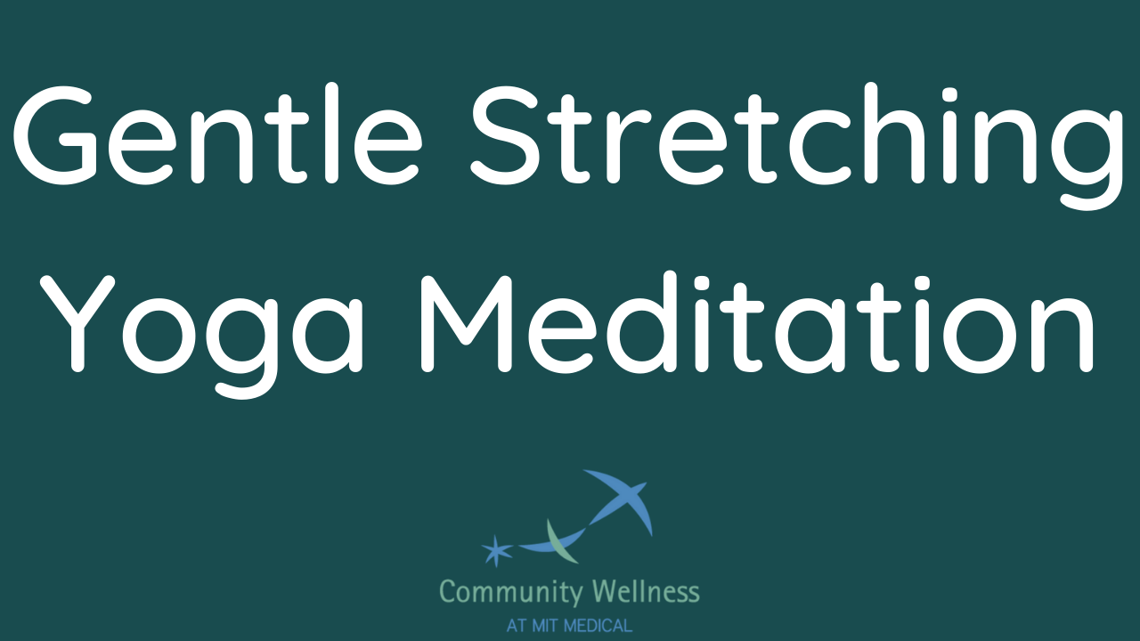 Gentle Stretching Yoga Meditation (An MBSR curriculum recording)